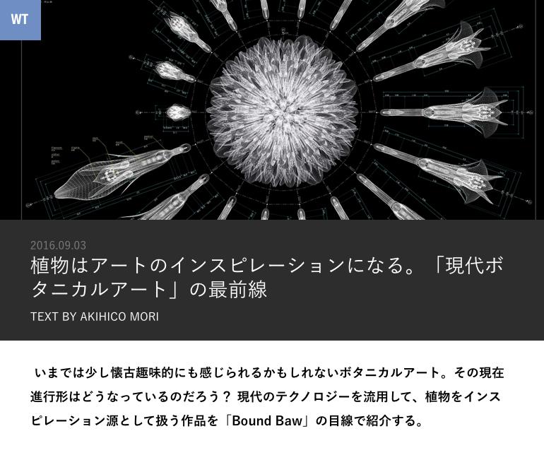 boundbaw.com