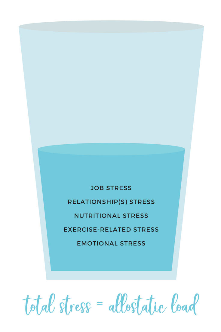 stress and allostatic load