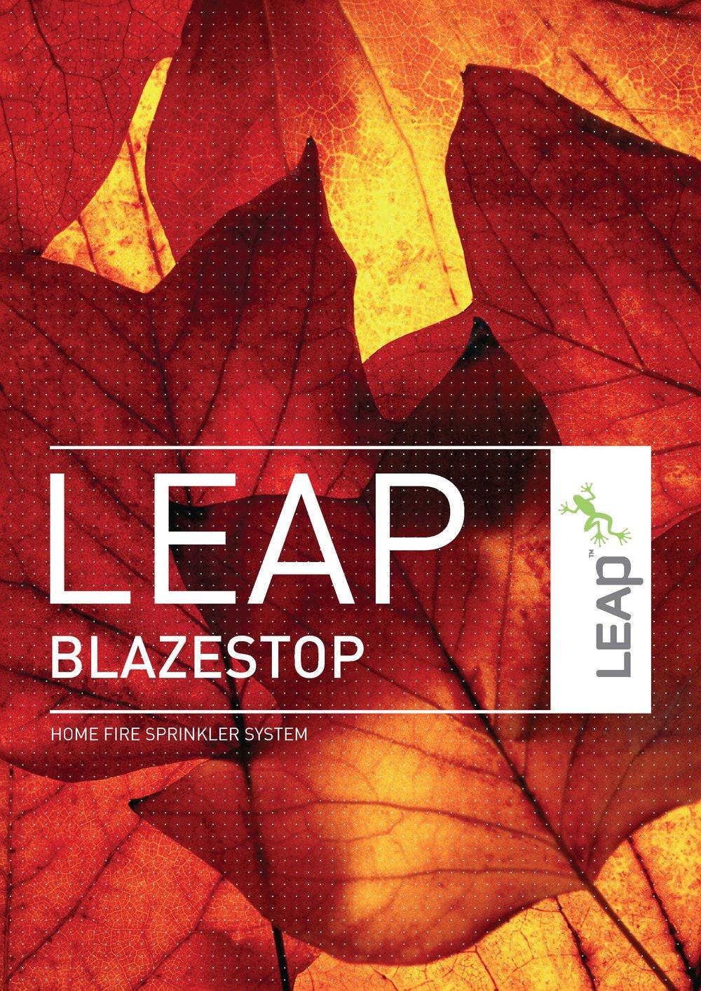 LEAP_BLAZESTOP_Jan18_lr Cover.jpg