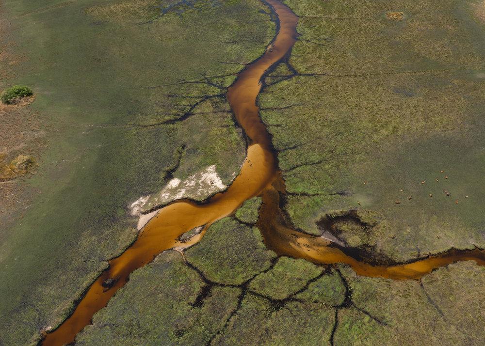 Botswana Akasha Sutherland.jpg