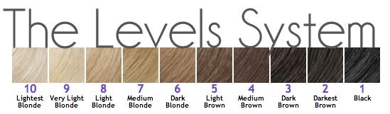 Berikut adalah level warna rambut / ketererangan rambut dari level 1 - 10