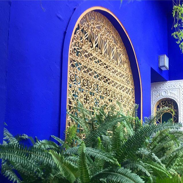 Exploring the gardens... . . . . #marrakesh #morroco #shendovetravels #blacktravel #travelnoire #travellafrique