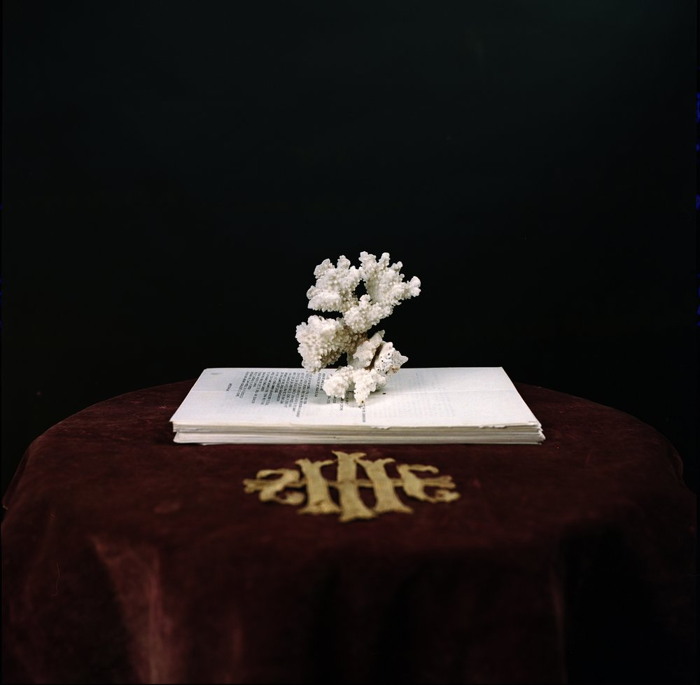 Rebecca Rose Harris, Analogue Photography, The Gates Of horn the gates of ivory, conceptual art