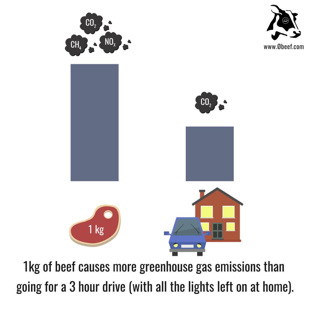 4. Car Emissions.jpg