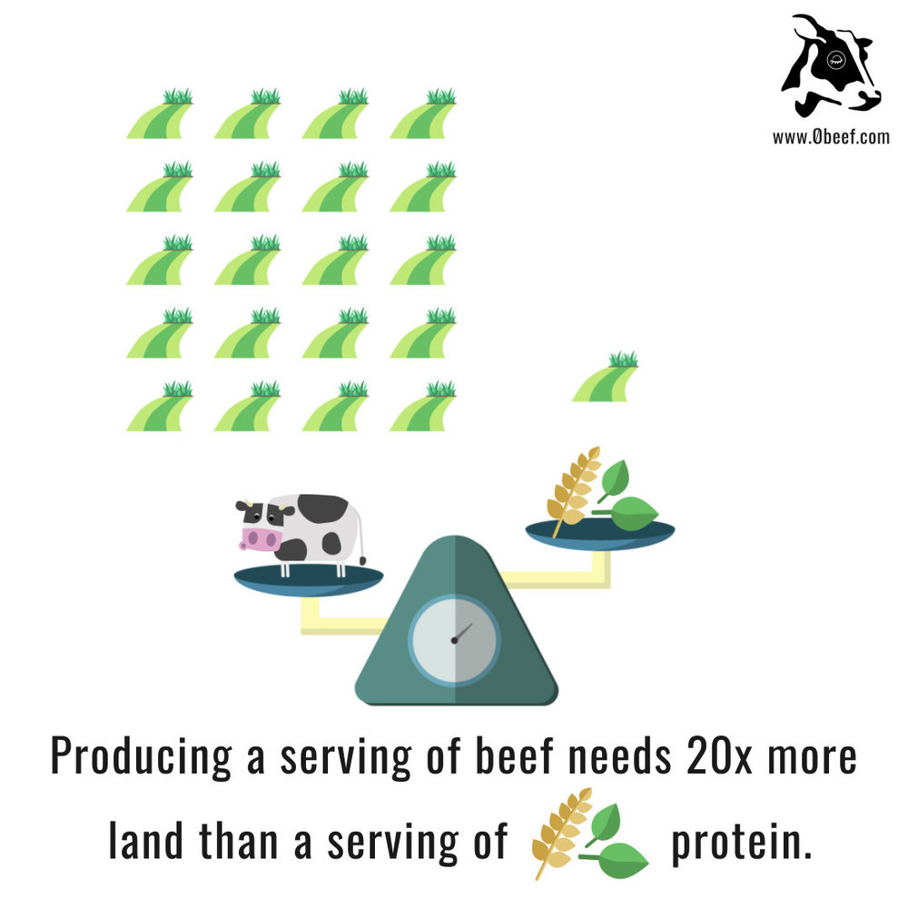 3b. Beef vs. Plants.jpg