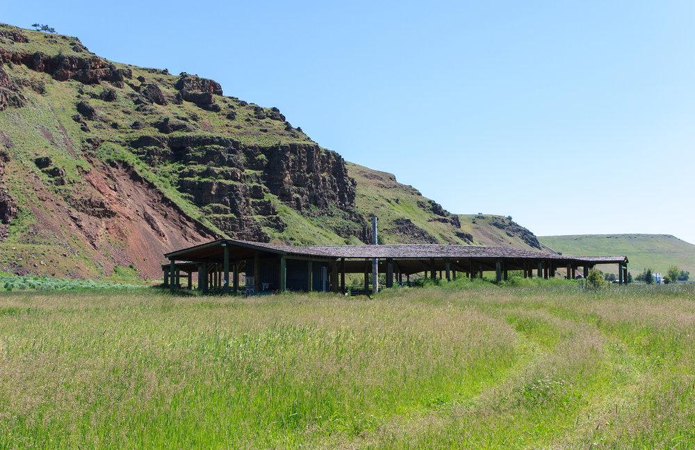 The Dance Arbor at the Nez Perce Wallowa Homeland
