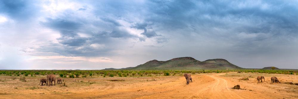 Madikwe Plains II