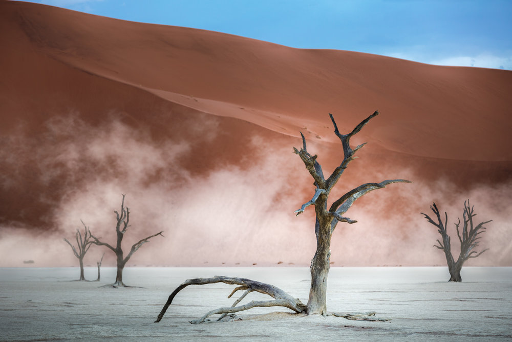 Dead Trees at Dead Vlei II