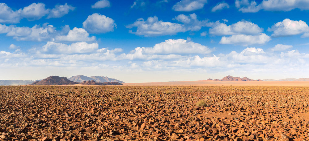 Namibia Plains I