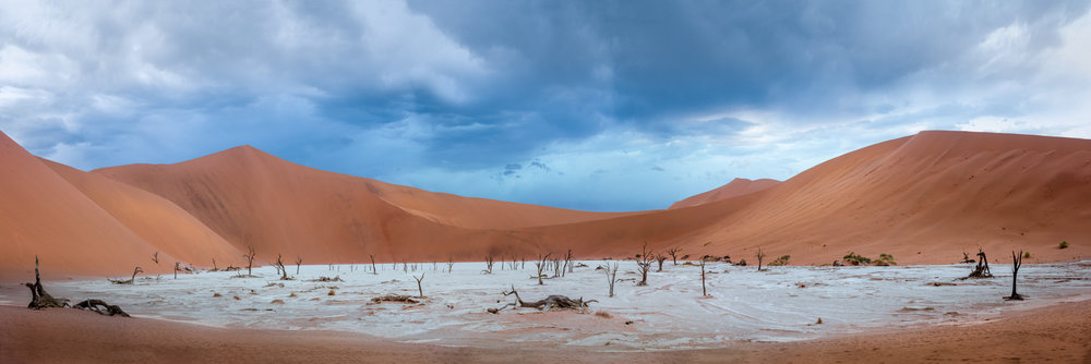 Panoramic View Of Dead Trees At Dead Vlei