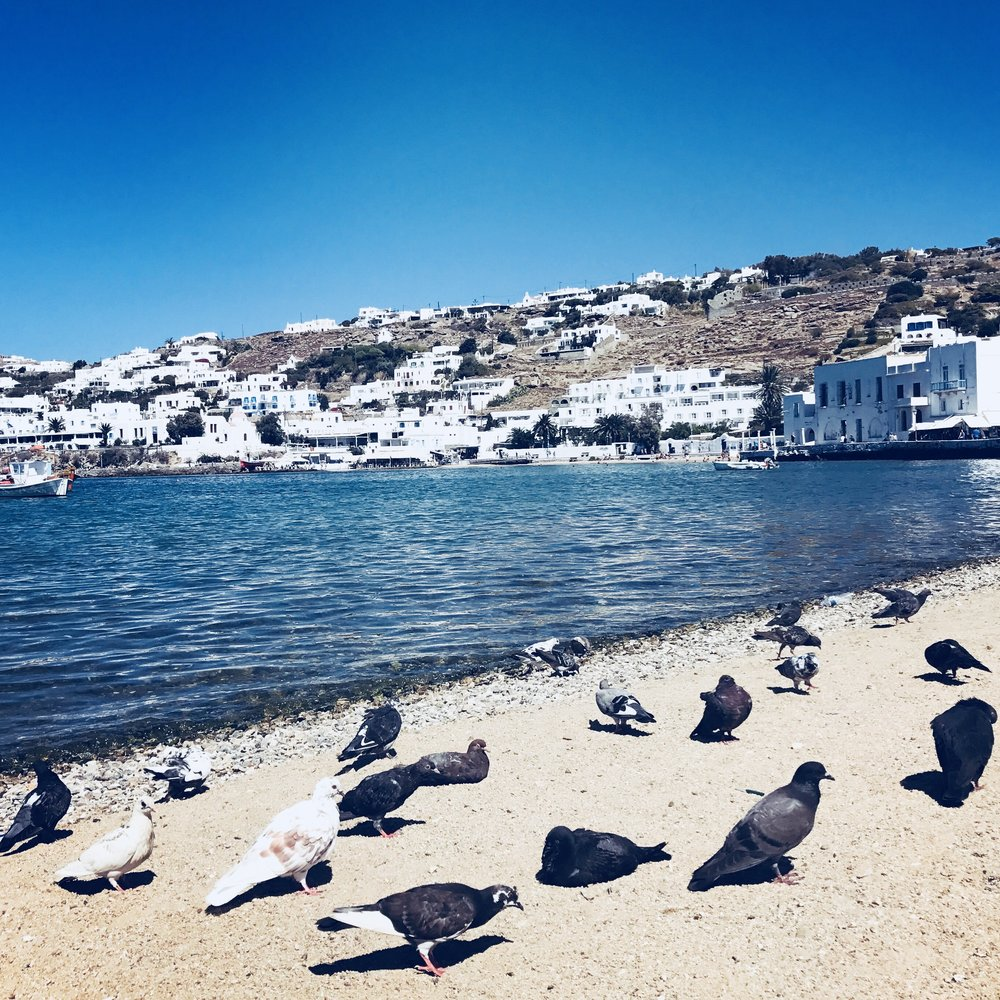 Mykonos, Greece - September - October 2019