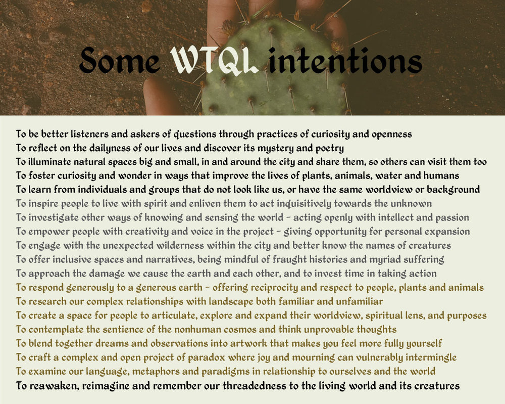 WTQL-Intentions.jpg