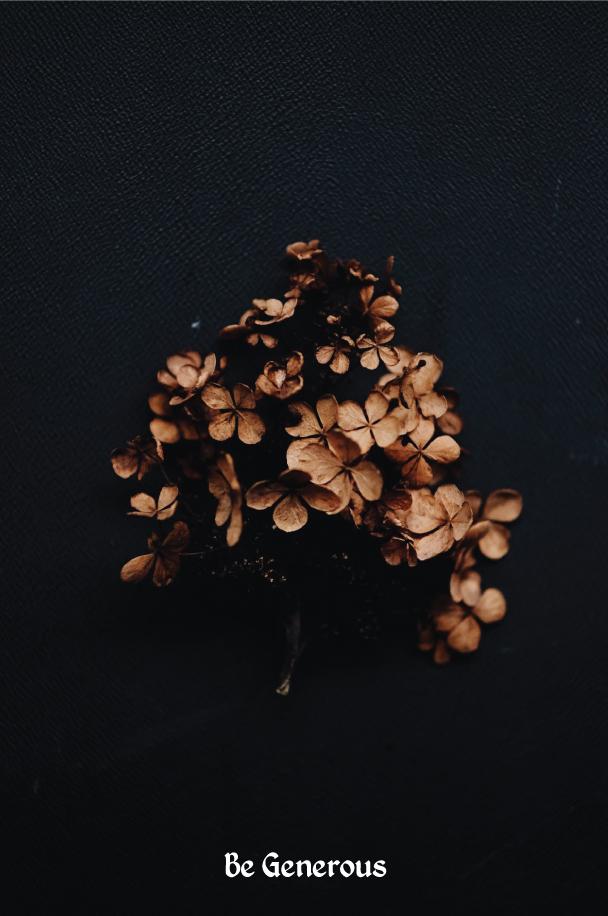 Generous---The-Dreams-of-Trees.jpg