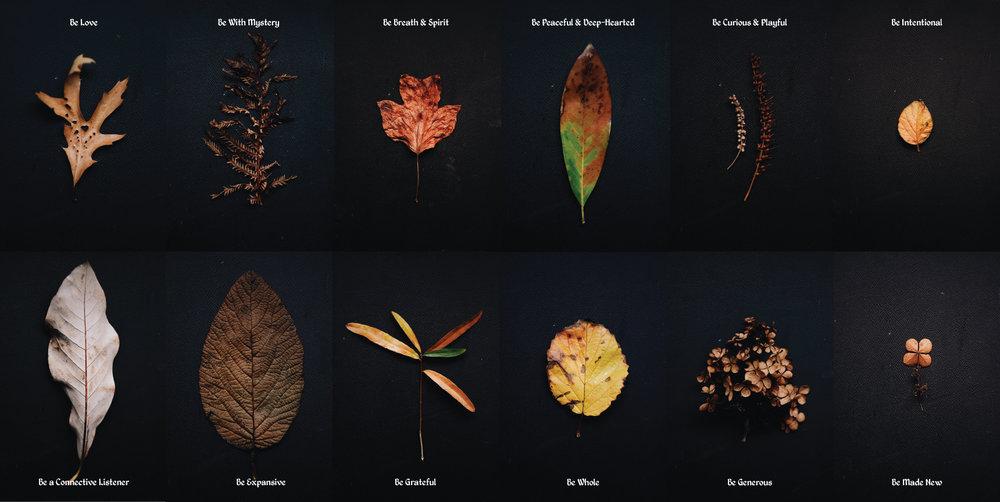 The-Dreams-of-Trees-Part-2-v1.jpg