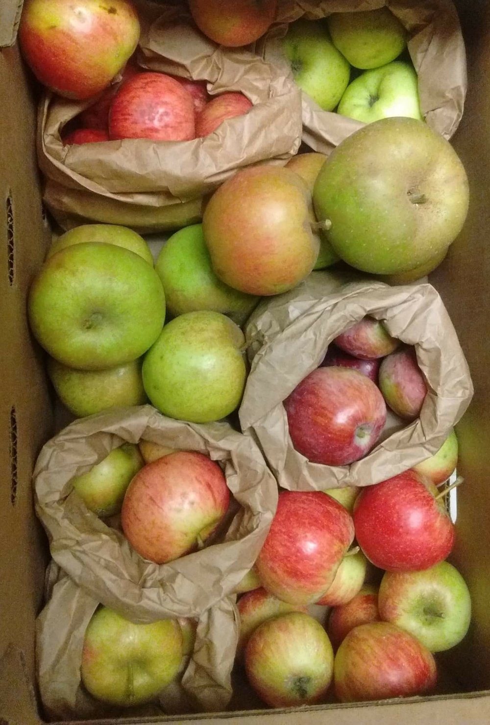 JOIN AN APPLE CSA - DISCOVER YOUR NEW FAVORITE OREGON APPLE FLAVORS