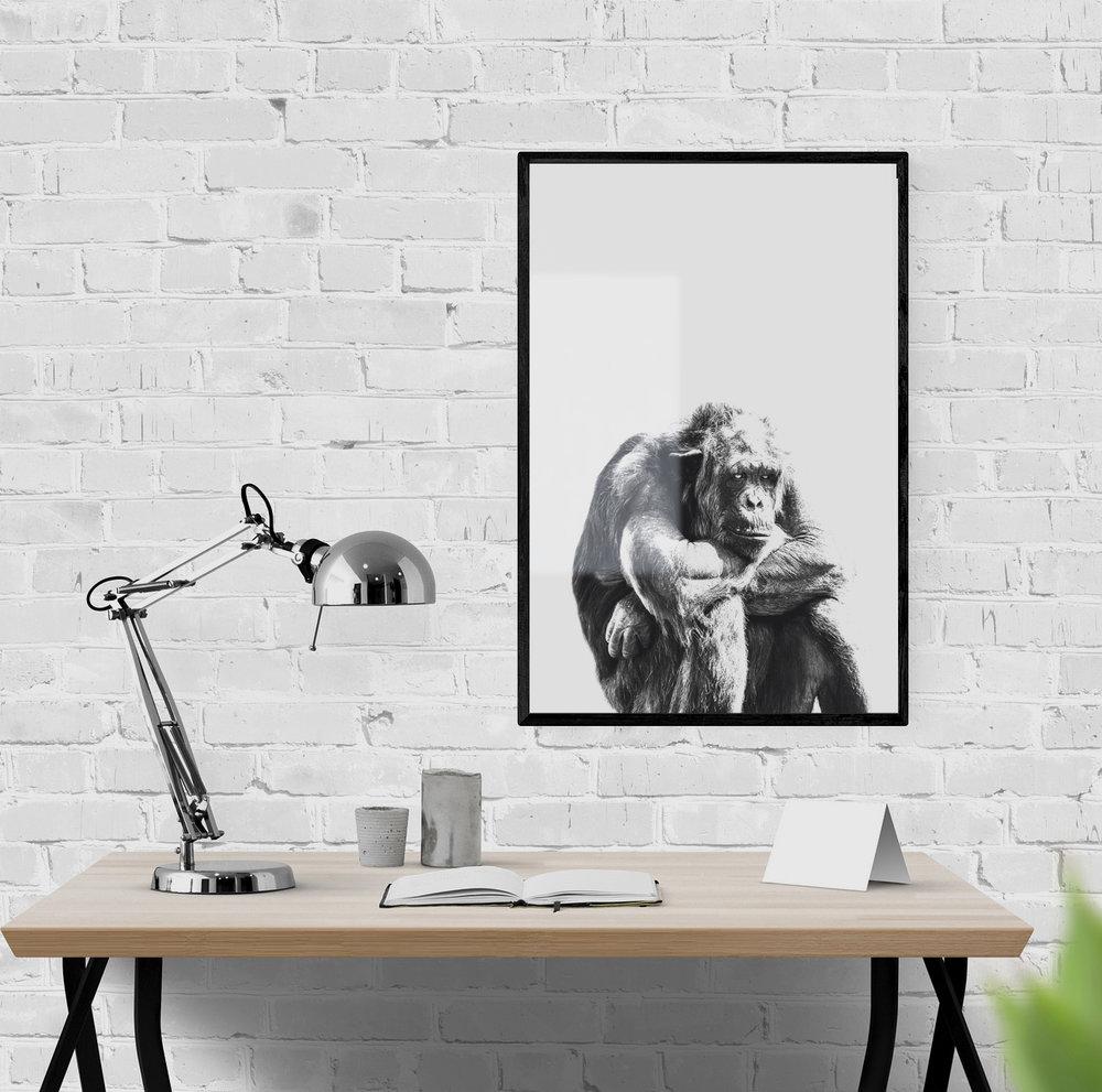 Art Basket Original chimpanzee poster