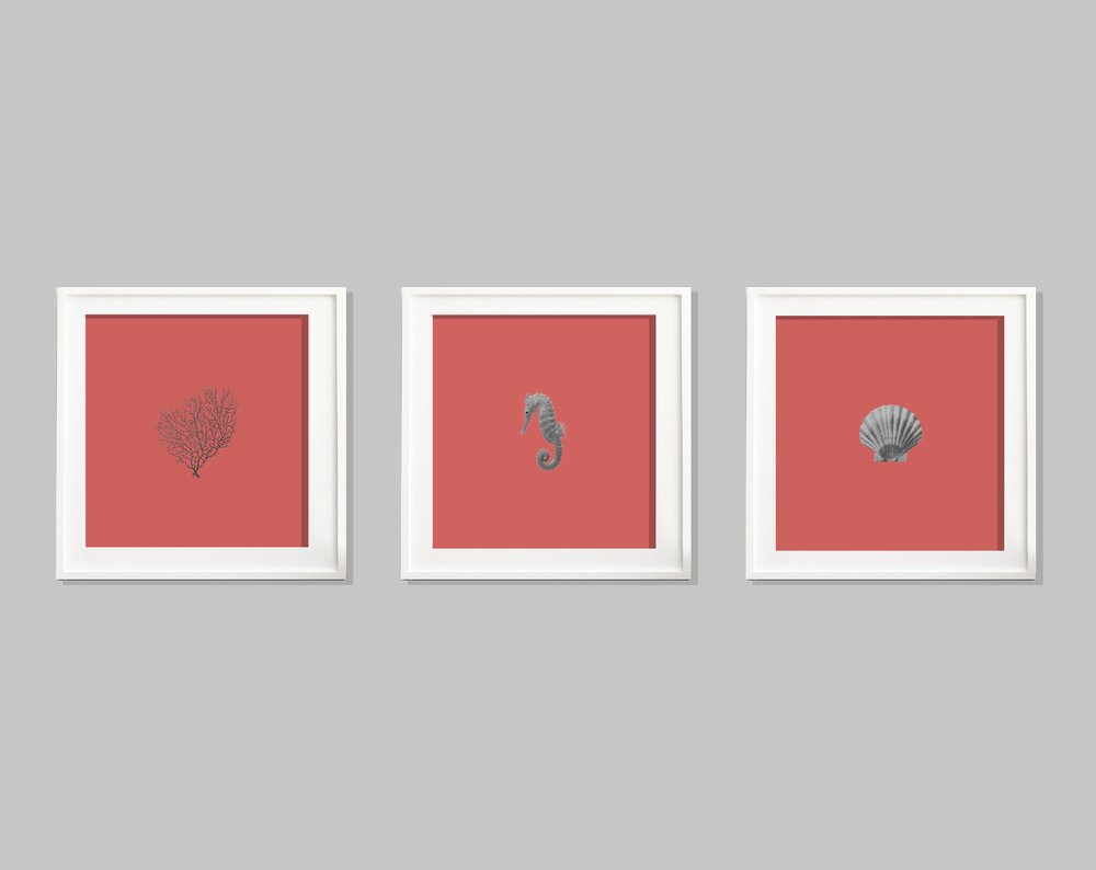 Set of 3 Living Coral C-Type Prints