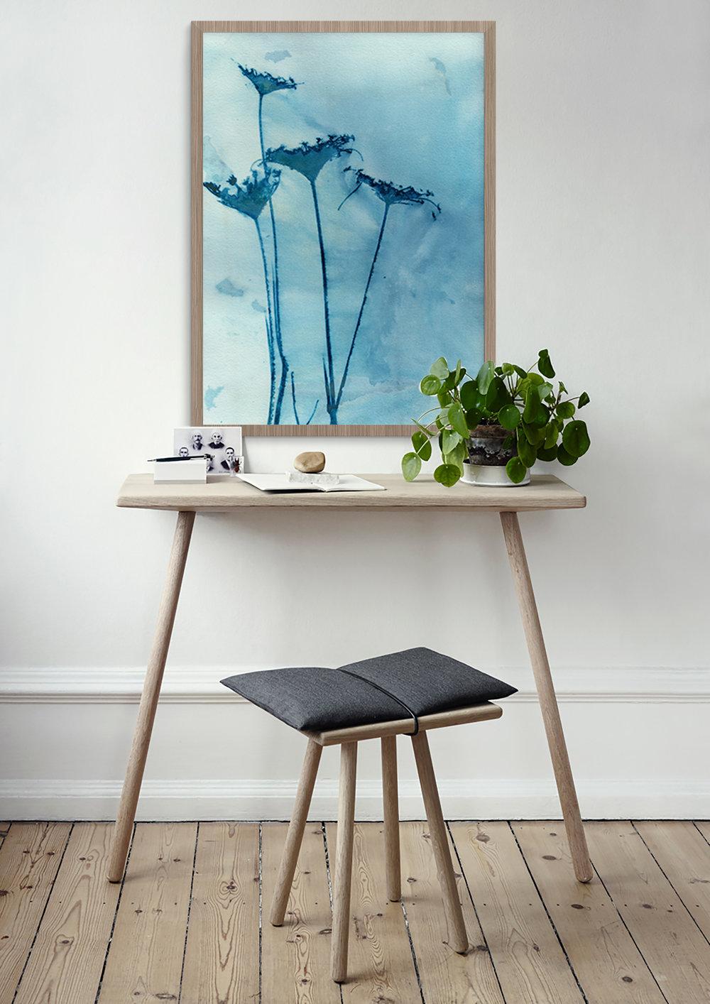 'Blue Anne' cyanotype print