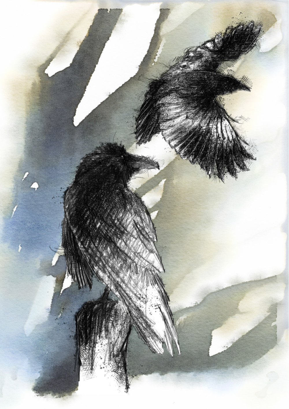 Limited Edition Crow Giclée Print