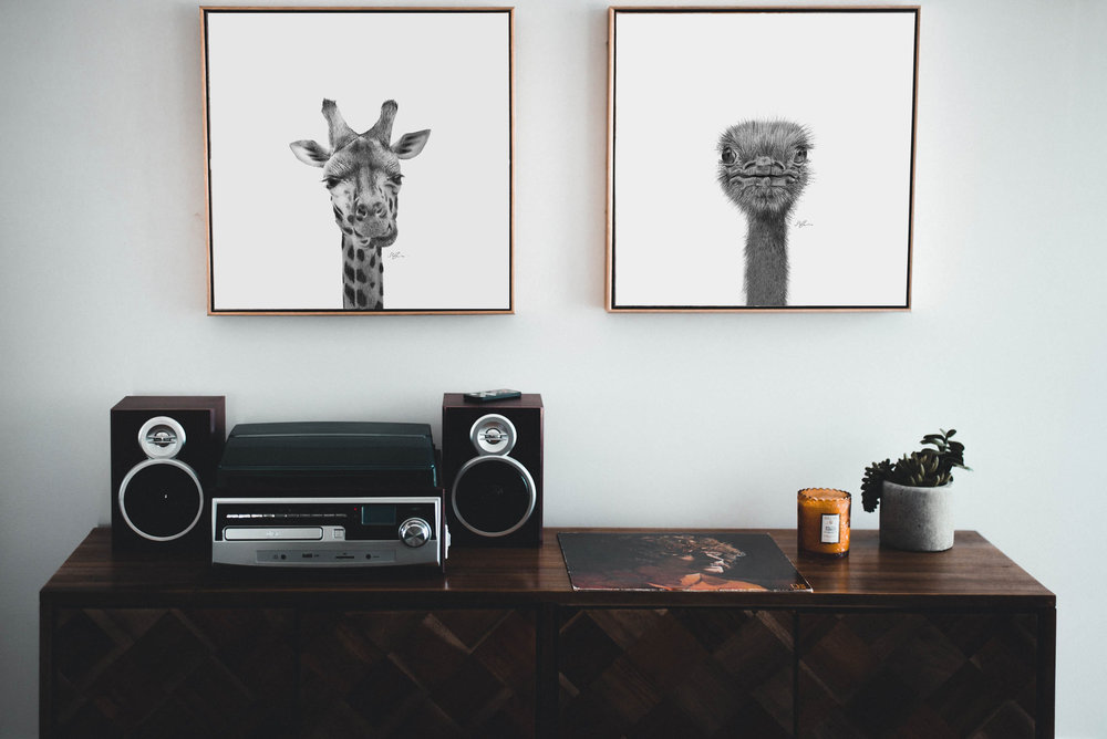 Giraffe and Ostrich giclée prints by Sophie Green