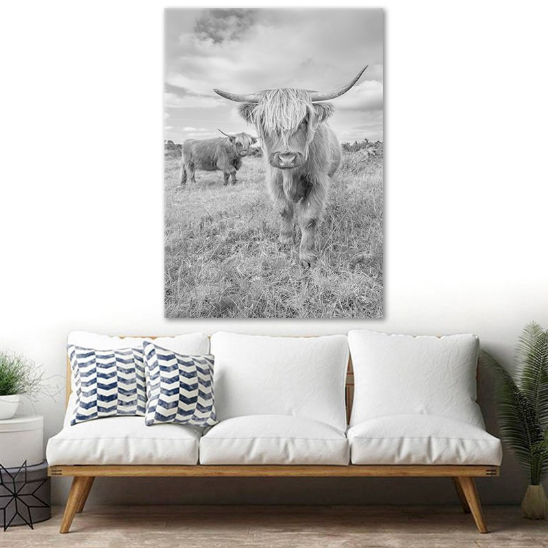 Highland Cow photographic print by Stuart Swies