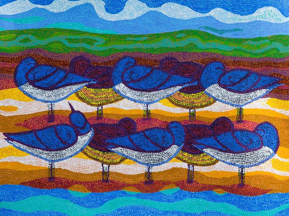 flocksRoostingAustraliaCROP.jpg
