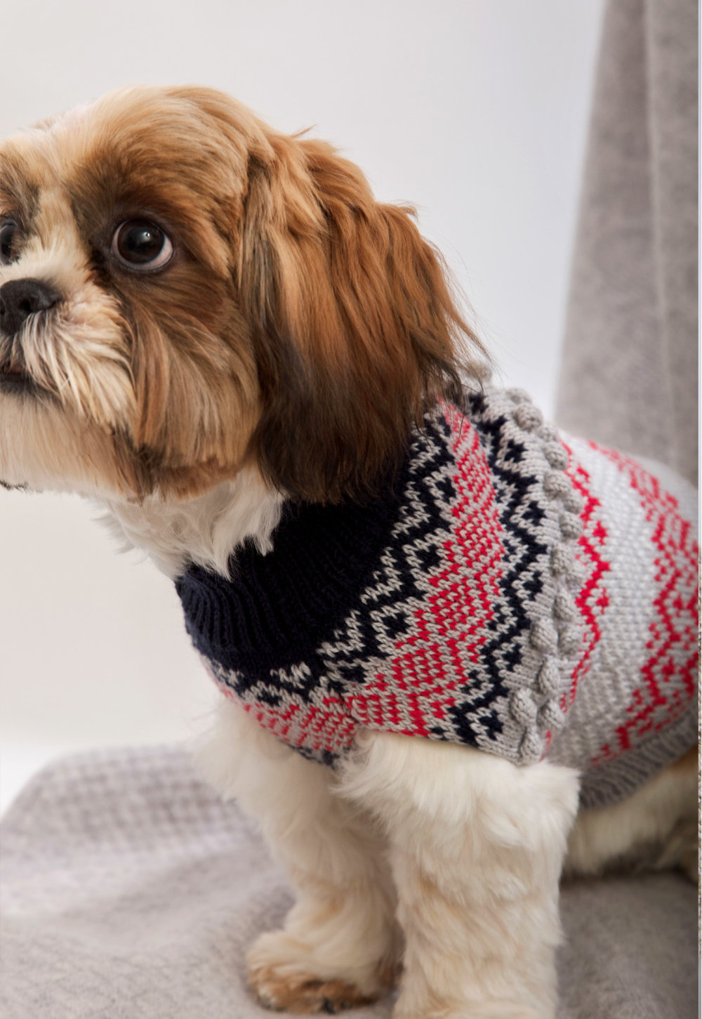 CHRISTMAS DOG JUMPER UK