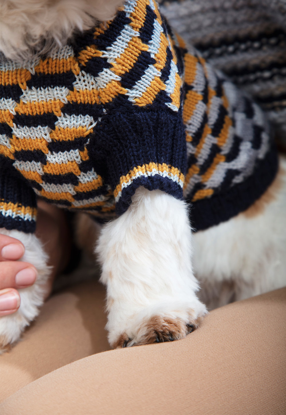DOG JUMPER KNIT UK