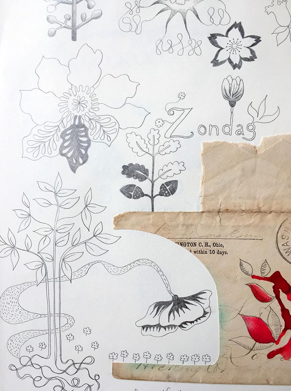 Marenthe botanical illustration sketchbook.jpg