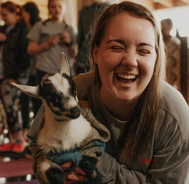 We LOVE our Goat Yoga classes with @shenanigoatsyoga !! Have you tried it!? . . .captured by @kelsistoutphotography