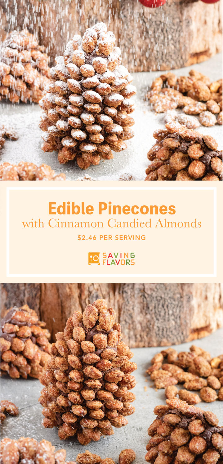 Make these realistic looking edible pinecones made with cinnamon and sugar coated almonds roasted into caramelized crisps, and a simple 4 ingredient fudge!