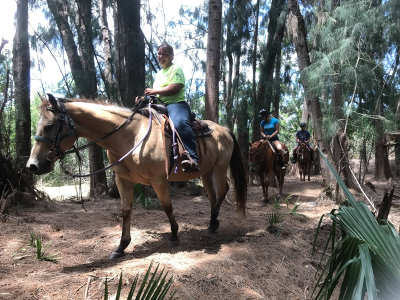 recreational-activities-horseback-riding-florida