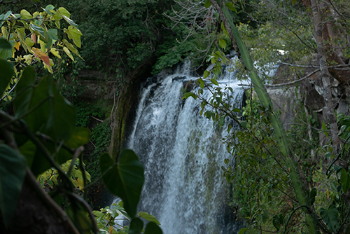CostaRica2018.waterfall2.jpg.jpg