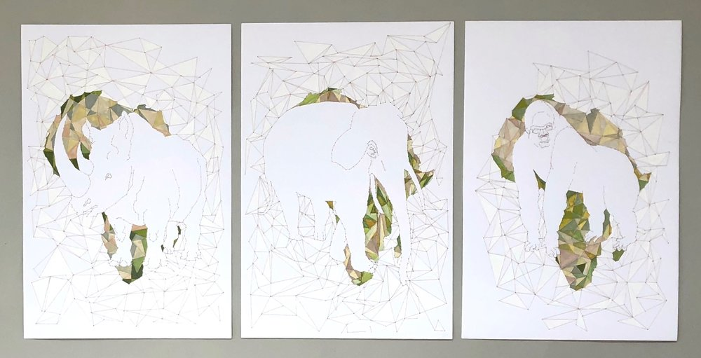 World Without, triptych   43w x 25h inches,  Paper, thread, watercolor  2018  In this artwork, the silhouettes of silverback gorilla, black rhinoceros and African elephant overlap on the continent of Africa. Elephants create grassland and waterholes for zebras, warthogs, cheetahs, gazelles and wildebeest and more. Black rhinos also help diversify and enrich the savanna plants and thereby grazing habitat for antelopes, zebras and gazelles. Mountain gorillas, which live in two national preserves in Uganda and Republic of Congo, thin out tropical forest canopies to balance the plant life and are one of the great seed dispersers of that ecosystem. All African wildlife will suffer when these three giants are gone.