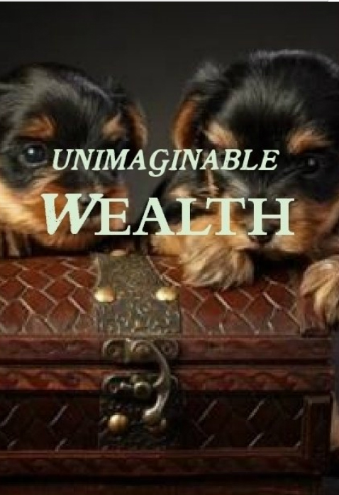 Unimaginable Wealth, A Novella