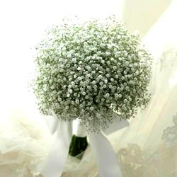 Pure Baby's Breath Bridal Bouquet $60