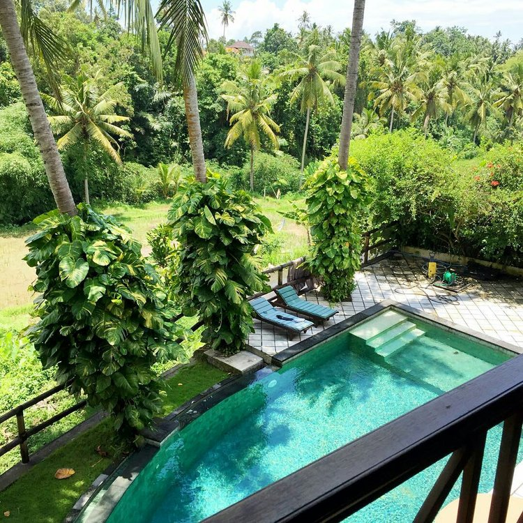 Bali Yoga Retreat With Michelle Dina Dina Ghandour