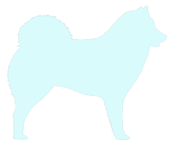 Southern Eurasier Association (UK)