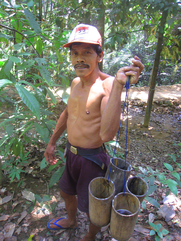 coconut-palm-sugar-farmer.jpg