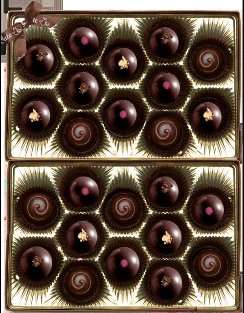 Gnosis Truffle Collection mylk raspberry dark golden 24pc.png