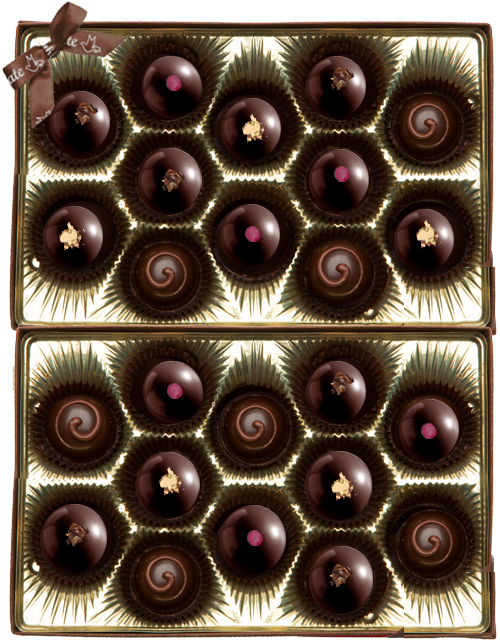 Gnosis Truffle Collection mylk raspberry dark golden 24pc.png