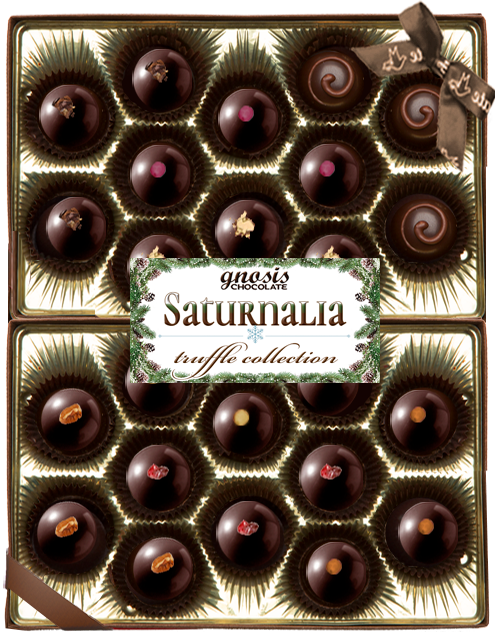 SATURNALIA collection 24pc vertical.png