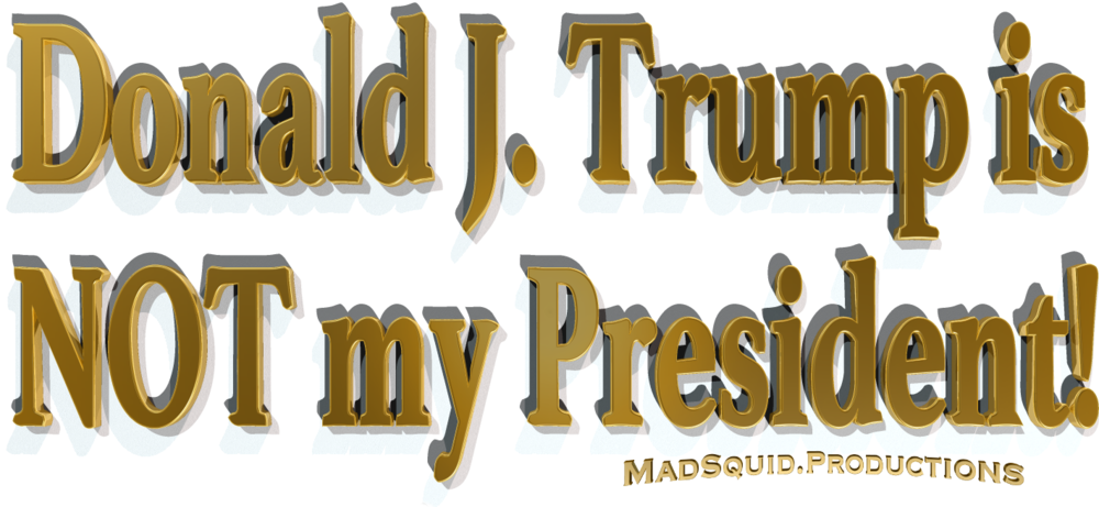 NotMyPresidentMastheadTRIMMED.png