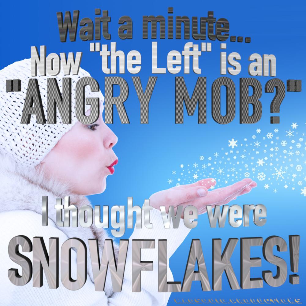 AngryMobOfSnowflakesMEME.png