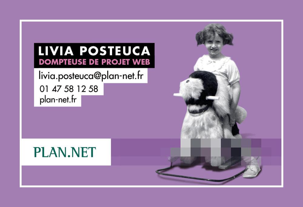 carte2010_LiviaP.jpg