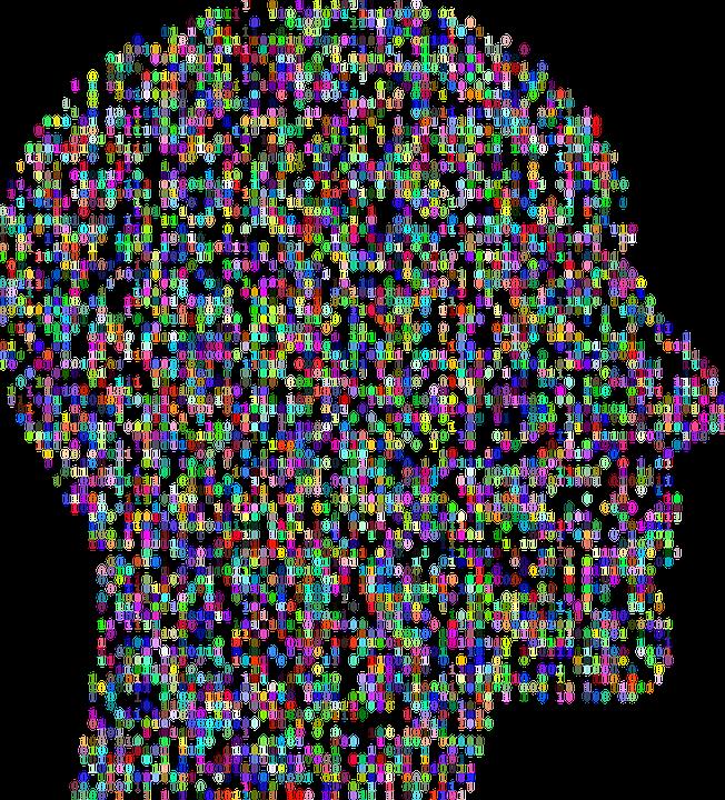 cranium-2099135_960_720.png