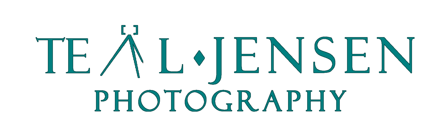 Teal Jensen Wedding and Portrait Photography