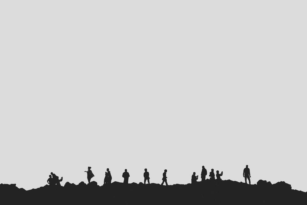 pexels-photo-71269.jpeg