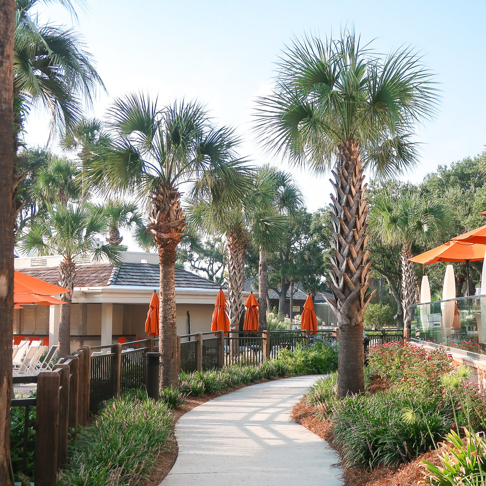 Sonesta-Resort-Hilton-Head-Island-3.jpg