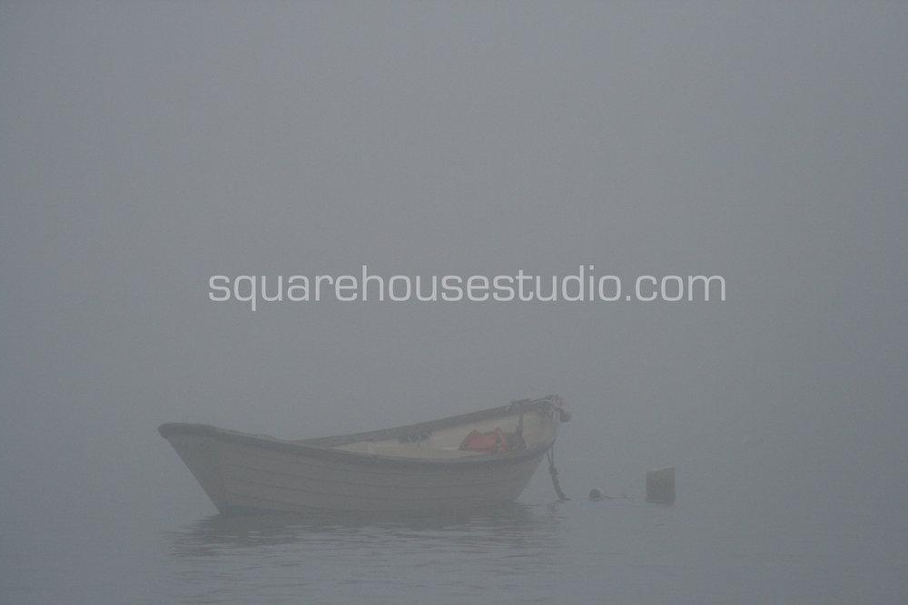"Solitude , 8"" x 10,"" $50, Unframed photo"